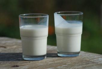 lait de cafard